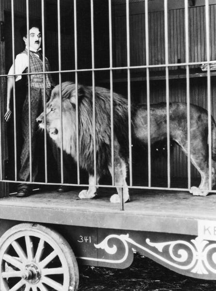 Chaplin: The Circus